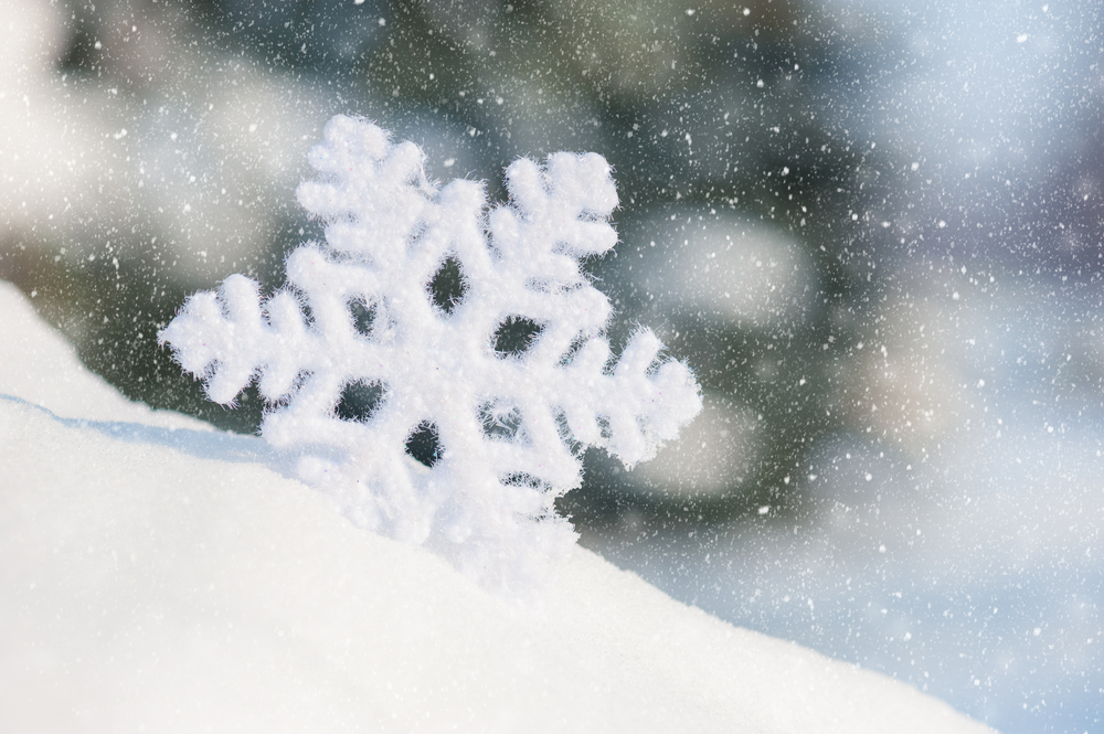A snowflake in an ice dam